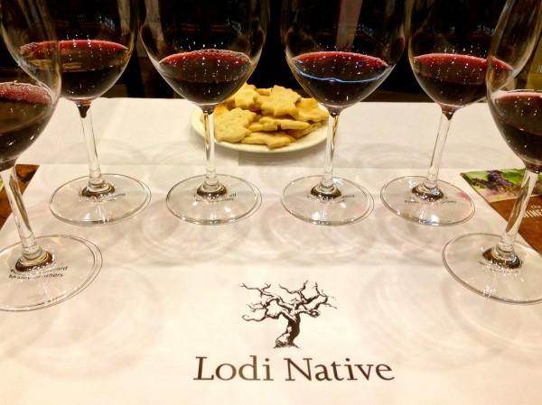 Lodi wine tasting tours