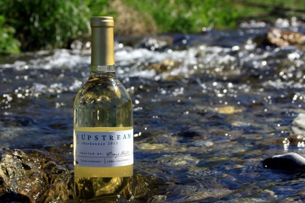 Upstream-Wines-at-Watts-winery-Lodi-limo-wine-tours