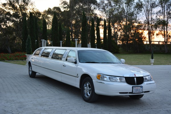 ladies-night-out-wine-tasting-limo